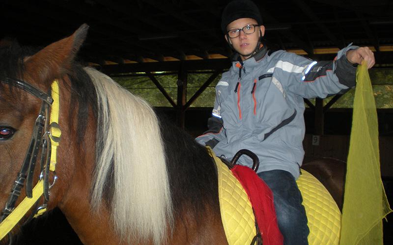 pferd6.jpg